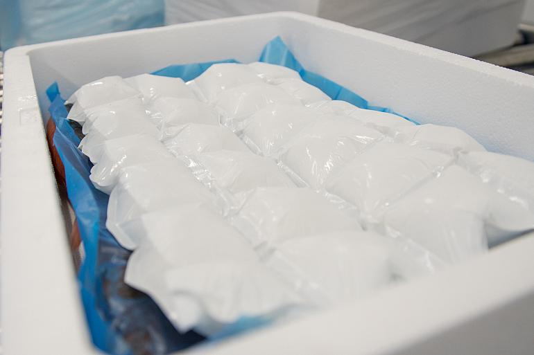 Packaging solution for transporting fresh seafood